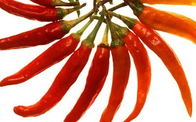 600px-Charleston_Hot_peppers_white_background.jpg